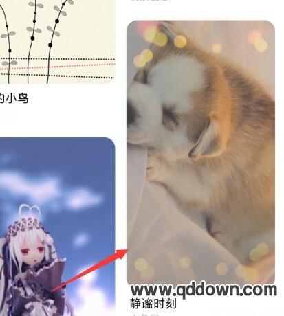 小米miui11来电背景怎么设置